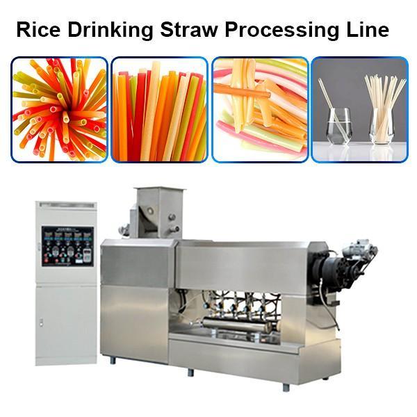 Macaroni Pasta Degradable Drinking Straw Production Line Extruder Making Machines #1 image
