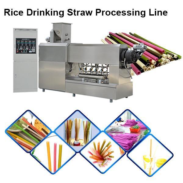 Jinan Sunward 100-150kg/H Edible Rice Making Drinking Straw Machine #1 image