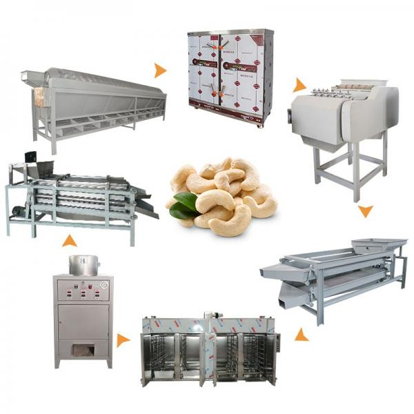 Automatic Honey Coated Peanut Cashew Nuts Walnuts Almond Roasting Frying Processing Machine by Factory in Cheap Price #1 image