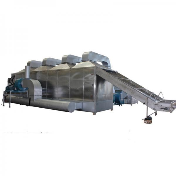 Hemp Hot Air Continuous Drying Machine Dryer Drying System #1 image